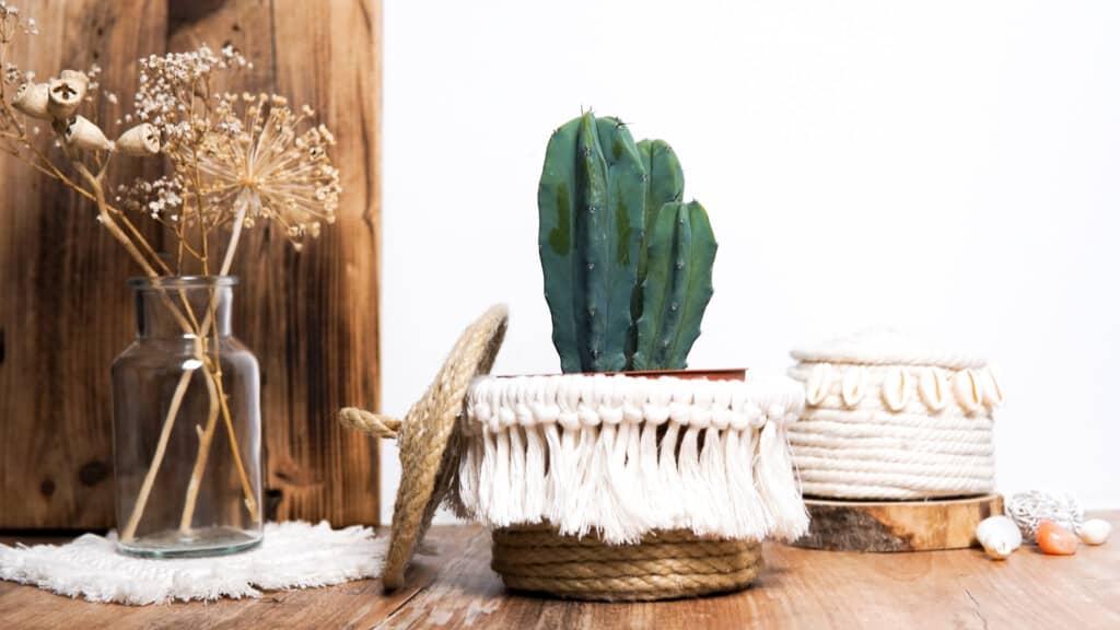 Korb basteln Blumentopf Kaktus